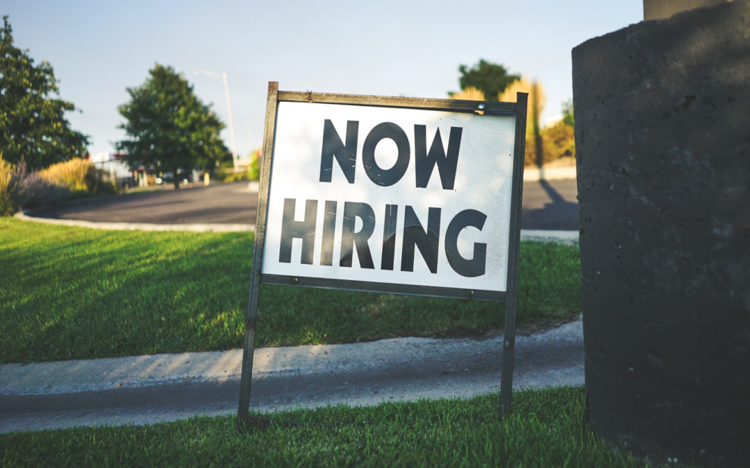 Diviser le salariat: l'État employeur en dernier ressort